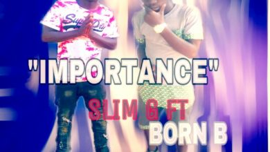 Photo of Slim G Ft. Born B – Importance