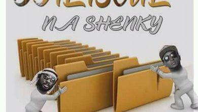 Dalisoul Shenky Ma Files