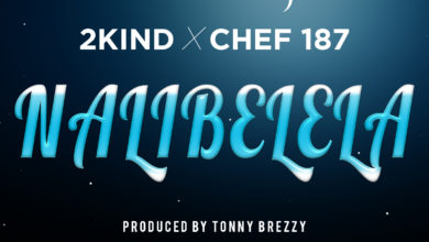 Photo of THROWBACK: 2Kind Ft. Chef 187 – Nalibelela (Prod. By Tonny Breezy)