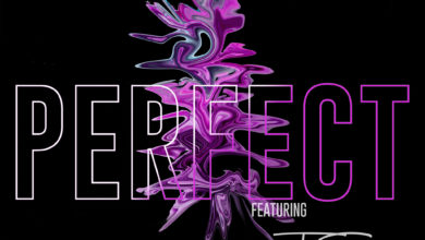 Photo of Scott Ft. T-Sean – Perfect (Prod. By Thee High Grade)
