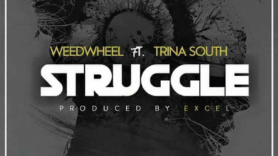 Photo of WeedWheel Ft. Trina South – Struggle (Prod. By Excel)