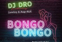 Photo of DJ Dro Ft. Luwizzy & Asap Rich – Bongo Bongo