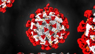 Photo of Shenky & D Bwoy – Corona Virus